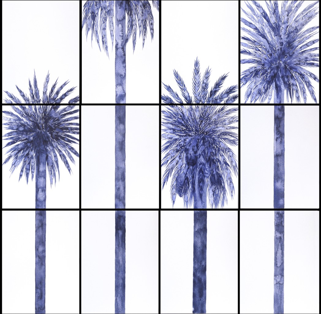 Group of 4 palms 2015 watercolor and graphite on paper  12 sheets by 31 x 23 cm each